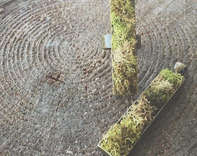 Nature's Moss