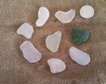 Collection of Sea Glass Shards