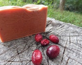 Spiced Cranberry Goats Milk Soap - Fall & Winter Collection 2015 Cranberry Spice Local Fresh Goats Milk All Natural Organic Pure GRACE Soap