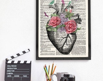 Anatomical Heart, Anatomy Print, Heart Anatomy Art, Anatomy Wall Art, 480