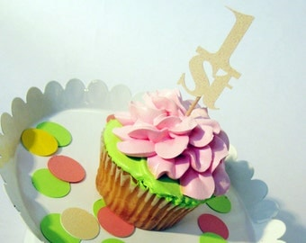 1st First Birthday Party Cupcake Topper - 12pc Set