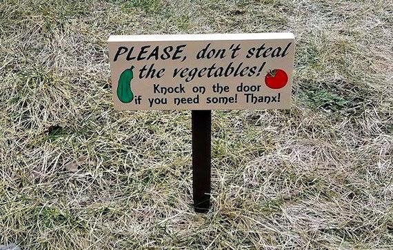 Custom Garden Sign Vegetable Garden Sign Don 39 T Steal The