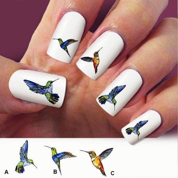 Hummingbird Nail Art 60 Nail Decals Humming Bird By