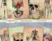 75 % de réduction vente anatomie florale - Collage numérique feuille cartes Digital C115 imprimable Télécharger Image Tags Image numérique Atc cartes ACEO squelette