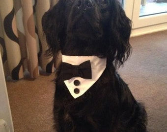 Dog Tux Bandana Bow Tie For Collar wedding outfit
