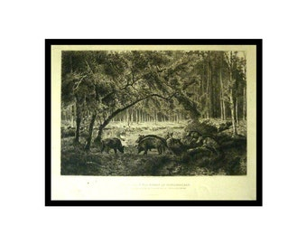 1886 Original Etching -  Wild Boars in the Forest of Fontainebleau - Peter Moran - Giuseppe Palizzi
