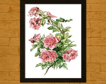 Get 1 Free Print - Vintage Rose Flower Print - Vintage Botanical Print Flower Print Romantic Wall Art Floral Illustration Flower Art Poster