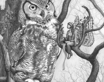 Learning from the Owl - Fairy Art Print - Fantasy Print