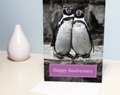 Happy Anniversary Card - cute penguin couple, Love birds. A5 photo greeting card. Wedding / Mens / Womens