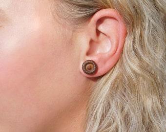 Acorn stud earrings -- Natural acorn earrings -- Wooden anniversary gift.