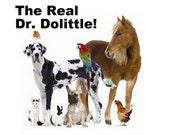 3-in-1 Learn Animal Communication, Animal Communicator, Pet Psychic, Pet Healing, Dog Whisperer, Cat Whisperer, Horse Whisperer