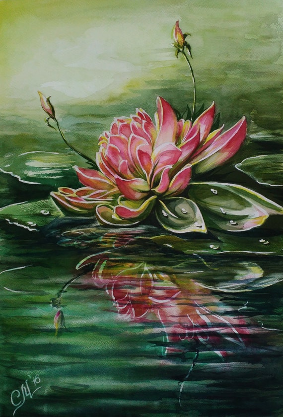 Water lily Pink lotus flower watercolor painting impressionist