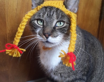 Braided Pigtail Cat Hat, hat for cat