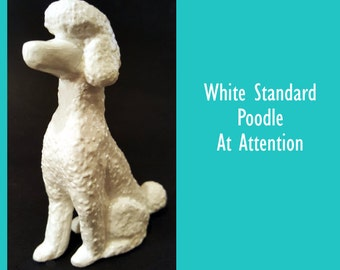 White Poodle Sitting At Attention