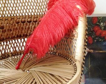 Vintage red ostrich feather Jays Ltd Regents Street London W1