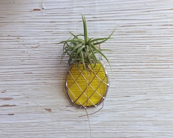 Stained Glass Pineapple Air plant Holder