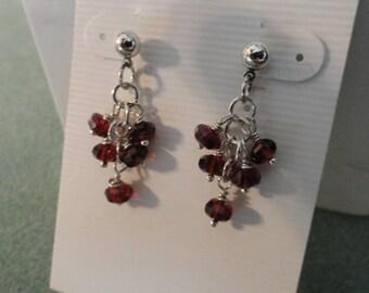 Garnet Earrings  -  #315