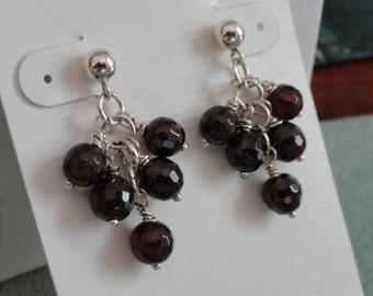 Garnet Earrings  -  #322