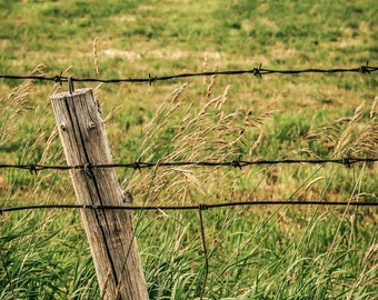 Country Wall Decor - FARM CANVAS PRINT - Fence with Hay Bales