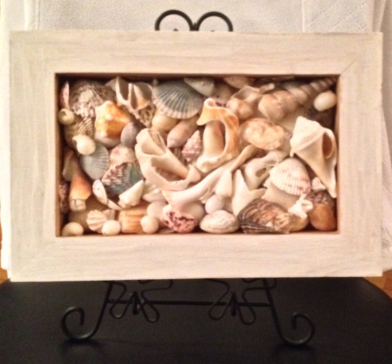 Seashell Shadow Box Art Display Coastal Beach Home Decor