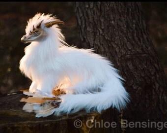 White Dragon- PREORDER
