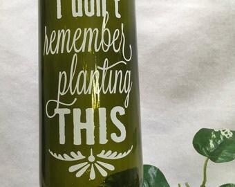 Wine Bottle Watering Spike