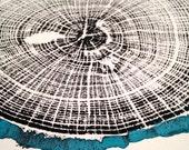 "Oak Print with Turquoise Bark, Original Tree Ring Print, unframed, 11""x14"""