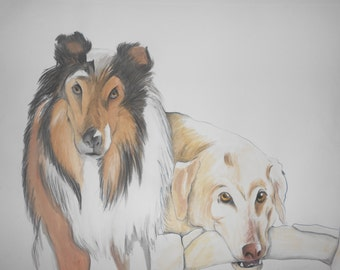 Custom Pet Portraits, Hand-Drawn and Painted