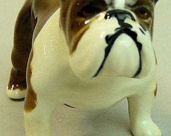 Beswick Ceramic Bulldog 'Boson' #1731