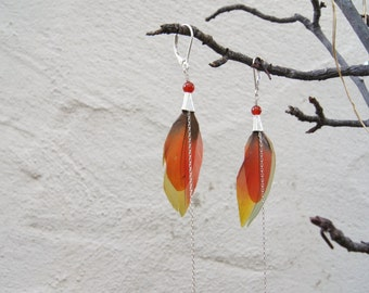 Red, Blue, and Yellow Feather Earrings