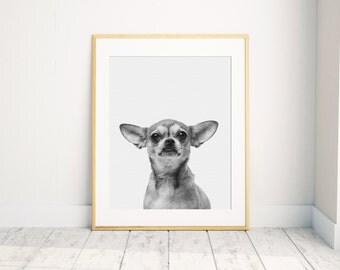 Peekaboo Chihuahua Print, Baby Animal Print, Nursery Print, Animal Wall Art, Chihuahua Print, Nursery Printable Art