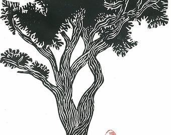 Linoleum Block Print - BRISTLECONE PINE - Black and White Pine Tree Print 9x13 - Ready to Ship