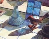 Birds Sunlight Window Still Life Original Framed Art Painting Watercolor Belinda DelPesco