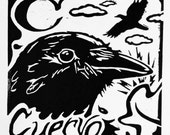 Cuervo crow spanish alpha...