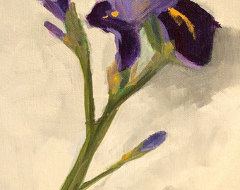 Purple Flower Painting, Iris Bloom, Original Acrylic, 8x10 Canvas, Spring Floral Bloom, Gray Background, Small Wall Decor, Lavender, Yellow