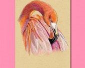 ATC ACEO Flamingo