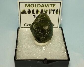 MOLDAVITE Tektite Meteorite Impact Glass In Perky Mineral Specimen Box From Czech Republic FREE Moldavite Love Souvenir Card