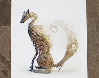 clever and riddled with secrets - fox  - Original Giclee Edition Print - 13x19""