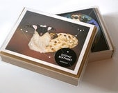 Zodiac Birthday Boxed Set