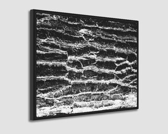 Wrapped Canvas Photo Print of Rustic Black and White Distressed Tree Bark Wood