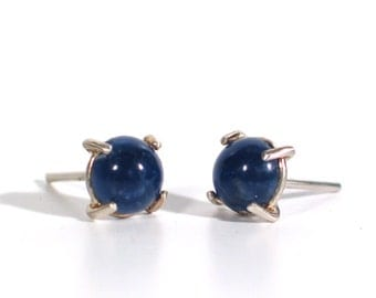 Lapis Lazuli Post Earrings