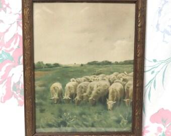 Vintage Grazing Sheep Art Print/ Cottage Chic Pastoral Framed Wall Decor