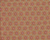 Moda Fabrics Botany Nature Circles in Bark - Half Yard