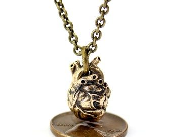 Anatomical Human Heart Necklace - Small Size - Bronze Anatomical Human Heart Pendant Small Anatomical Heart 2067