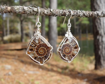 Amazing Ammonite Fossil and Sterling Silver Wire Wrapped Earrings ~ Organic Jewelry, Fossil Jewelry, Fibonacci Sequence, Spiral of Life