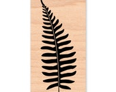 FERN Rubber Stamp~FERNS~Fern Silhouette Stamp~Solid Image Stamp~Card Making Supplies!Art Craft Stamps by Mountainside Crafts (34-17)