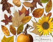 Autumn Medley Leaves digital scrapbooking graphics / clipart / instant download / printable