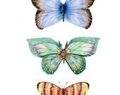Butterfly Art Print - Butterfly Artwork - Garden Art - Butterfly Watercolor Artwork - Butterfly Painting - Nursery Art - Insect Watercolor