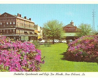 Vintage New Orleans Postcard - Pontalba Apartments and Cafe Du Monde (Unused)