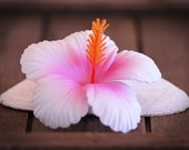 White and Pink Hibiscus, 2 3/4 Inch Hair Flower, Beach Wedding, Hibiscus Clips, Women's Hair Clip